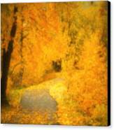 The Pathway Of Fallen Leaves Canvas Print by Tara Turner