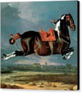 The Piebald Horse Canvas Print by Johann Georg Hamilton