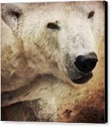 The Polar Bear Canvas Print by Angela Doelling AD DESIGN Photo and PhotoArt