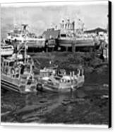 The Real Alaska - Caught At Low Tide Canvas Print by Pete Hellmann