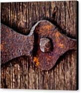 The Rusty Hinge Canvas Print by Lisa Russo