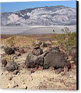 The Salt Flats Of Death Valley Canvas Print by Christine Till