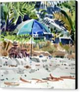 The Sun Bather Canvas Print by Donald Maier