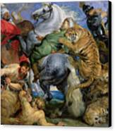 The Tiger Hunt Canvas Print by Rubens