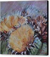 Thistledown Canvas Print by Debbie Harding