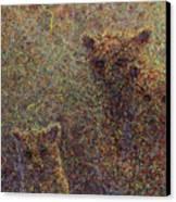 Three Bears Canvas Print by James W Johnson