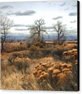 Three Brothers Canvas Print by James Steele