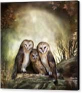 Three Owl Moon Canvas Print by Carol Cavalaris