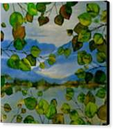 Thru The Aspen Canvas Print by Carolyn Doe
