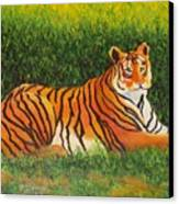 Tiger Canvas Print by Lore Rossi