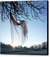 Transparent Fabric Canvas Print by Bernard Jaubert