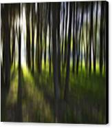 Tree Abstract Canvas Print by Avalon Fine Art Photography