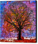 Tree Of Life Canvas Print by David Clanton
