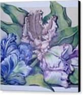 Trilogy Canvas Print by Joyce Hutchinson