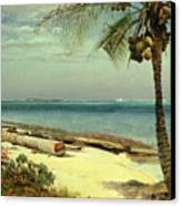 Tropical Coast Canvas Print by Albert Bierstadt