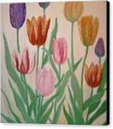 Tulips Canvas Print by Ben Kiger