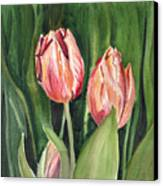 Tulips  Canvas Print by Irina Sztukowski