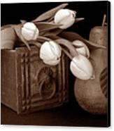 Tulips With Pear I Canvas Print by Tom Mc Nemar