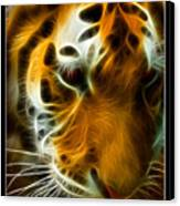 Turbulent Tiger Canvas Print by Ricky Barnard