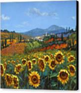 Tuscan Sunflowers Canvas Print by Chris Mc Morrow