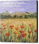 Tuscany Poppies Canvas Print by Nadine Rippelmeyer