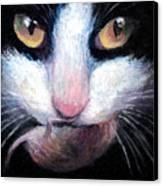 Tuxedo Cat With Mouse Canvas Print by Svetlana Novikova
