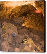 Two Skeletons Crawl Up A Rocky Hill Canvas Print by Taylor S. Kennedy