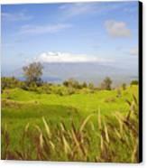 Ulupalakua Landscape Canvas Print by Ron Dahlquist - Printscapes