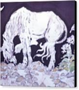 Unicorn Pauses Canvas Print by Carol  Law Conklin