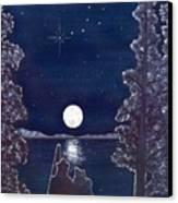Ursa Minor Canvas Print by Catherine G McElroy