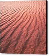 Utah Coral Pink Sand Dunes Canvas Print by Ryan Kelly