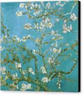 Van Gogh Blossoming Almond Tree Canvas Print by Vincent Van Gogh