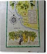 Vinedos Tio Pepe - Jerez De La Frontera Canvas Print by Juergen Weiss