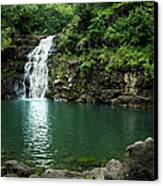 Waimea Falls Canvas Print by Charmian Vistaunet