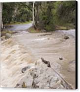 Water Flowing In The North Fork Canvas Print by Rich Reid