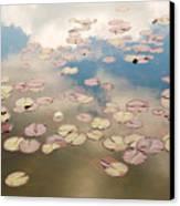 Water Lilies In Schoenbrunn Vienna Austria Canvas Print by Julia Hiebaum