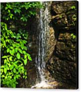 Waterfall In Forest Canvas Print by Elena Elisseeva