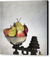 Weighing Pears Canvas Print by Jane Rix