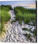 Wellfleet Beach Path Canvas Print by Tammy Wetzel