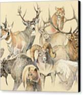 Western Heritage Canvas Print by Steve Spencer