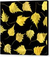 When Leaves Grow Old Canvas Print by Christian Slanec
