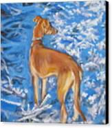 Whippet Canvas Print by Lee Ann Shepard
