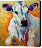 White Calf Canvas Print by Marion Rose