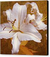 White Lilies. Time To Be Romantic Canvas Print by Jenny Rainbow
