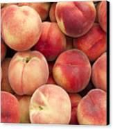 White Peaches Canvas Print by John Trax