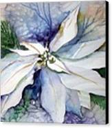 White Poinsettia Canvas Print by Mindy Newman