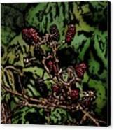 Wild Berries Canvas Print by David Lane