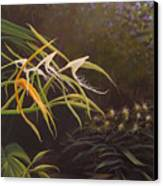 Wild Orchids Canvas Print by Hunter Jay