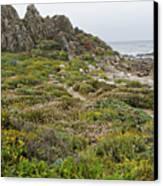 Wildflowers At China Rock - Pebble Beach - California Canvas Print by Brendan Reals