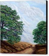 Windblown Clouds Canvas Print by Frank Wilson